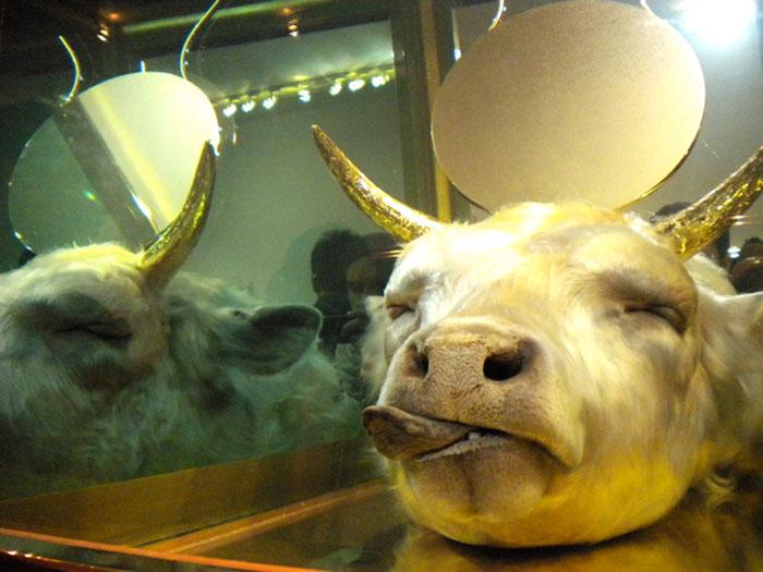 The Golden Calf1